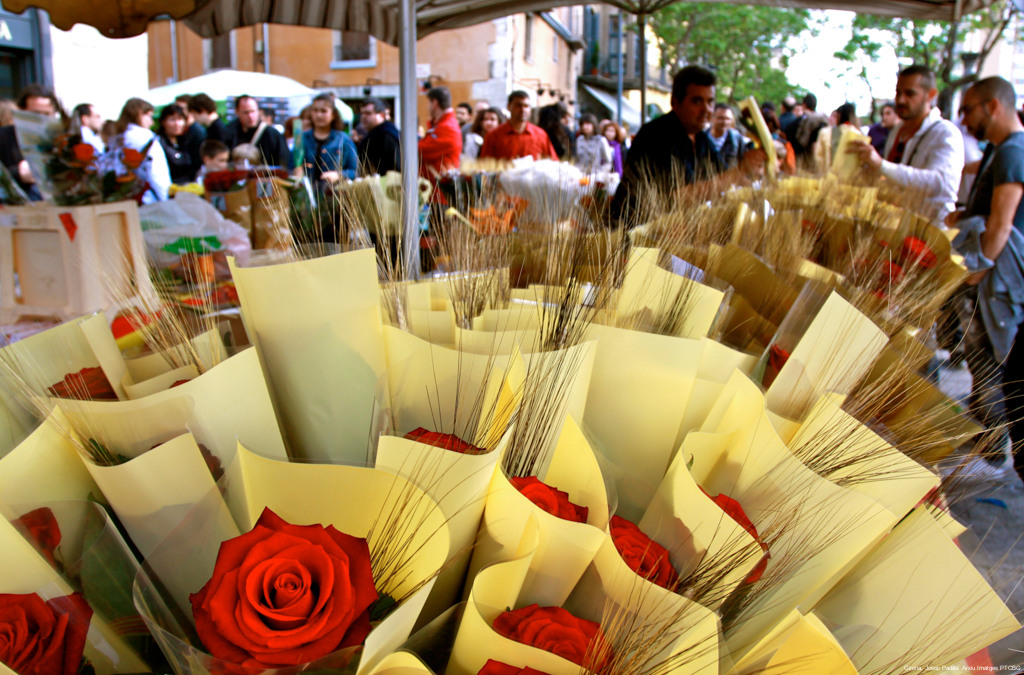 Sant Jordi en Girona