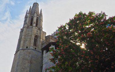 Guía de la Basílica de San Félix